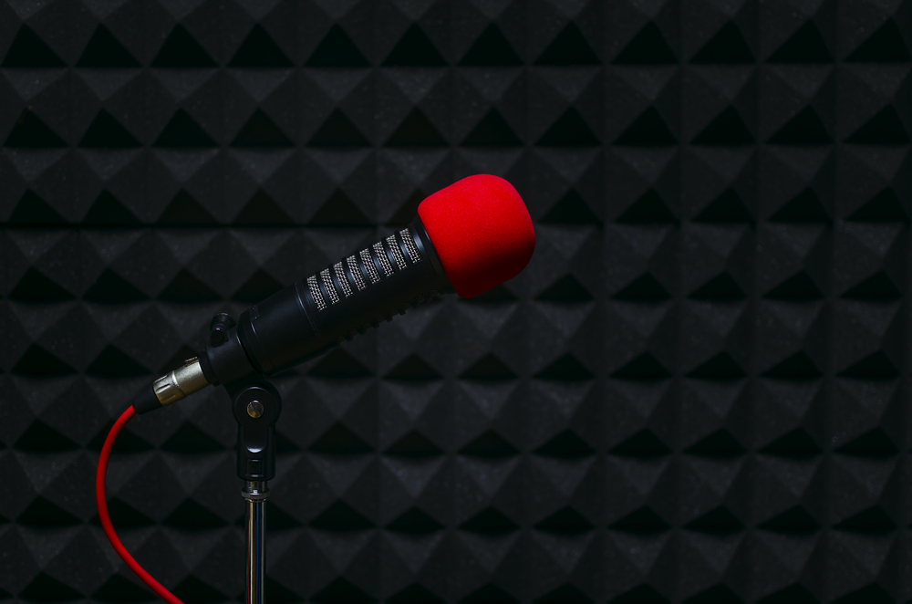 3 Things To Know Before Hiring Voiceover Talent | ProVoice USA Blog