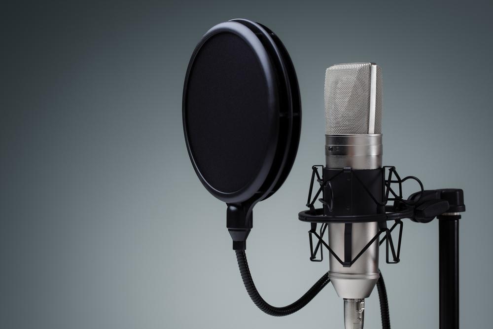 Professional recording mic